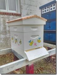 happy hive